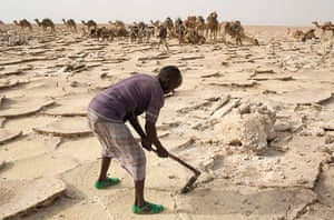 FTA: Siegfried Modola : A worker extracts salt from the desert