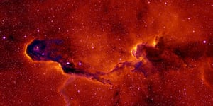 A month in Space: A New View of the Elephant's Trunk Nebula