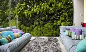 Living wall plants inside