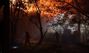 Firefighters try to protect the Sycamore Nature Centre from the wildfire near Malibu