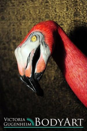 Hand as a flamingo