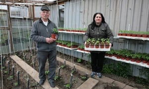 Vincenzo Santarsiero and his daughter Rosangela on their plot at Farm Terrace Allotments, Watford