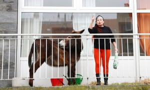 A donkey stands on the balcony of an apartment block as a woman argues with a police officer in Brussels. The animal, which is part of a theatre show, has been banned from the balcony after neighbours complained.