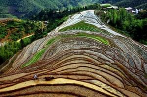 20 Photos: a farmer on the Shangbao terrace in Chongyi county, China