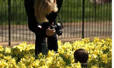 A young blonde woman stoops to photograph her child whose head only is visible in a sea of daffodils