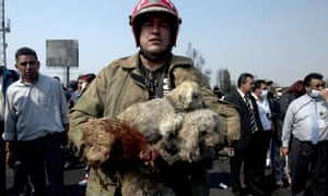 A firefighter carries puppies and a hen rescued from a house destroyed by the blast caused by a gas tanker that blew up in Ecatepec, north of Mexico City killing at least 18 people.