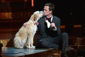 Tony awards: Sunny the Dog licks Neil Patrick Harris