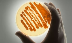 Resistant strains of bacteria are on the rise