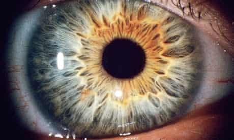 Human eye, big close-up 2