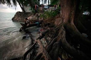 Kiribati, Pacific island: A girl sits on a log next to the roots of a tree, which have been exposed a