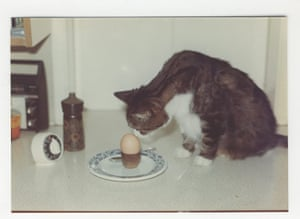 Judith Kerr: Mog and an egg