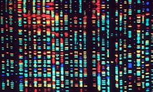 A computer rendering of a fragment of the human genome