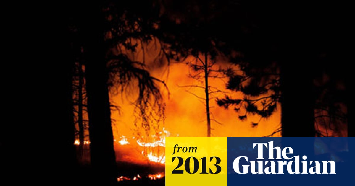 Colorado Black Forest wildfire quickly becomes state's most