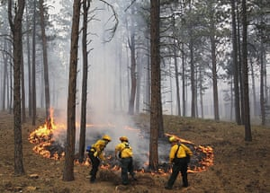 20 Photos: Fire officers burn off natural ground fuel in Colorado Springs