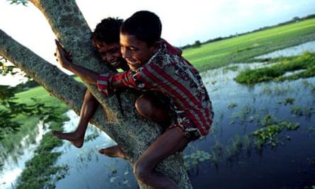 children climb a tree