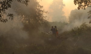 Firefighters spray water on the burning land on the outskirts of Pekanbaru in Indonesia's Riau province. The haze from fires in Indonesia is currently blanketing Singapore and could persist for some weeks.