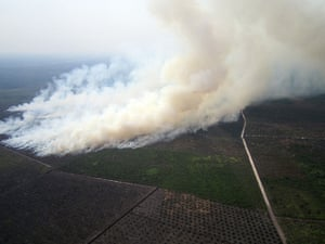 Singapore smog: Smoke billowing from fires in areas surrounded by agricultural plantations