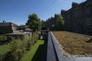 homes - edinburgh house: roof of extension with grass