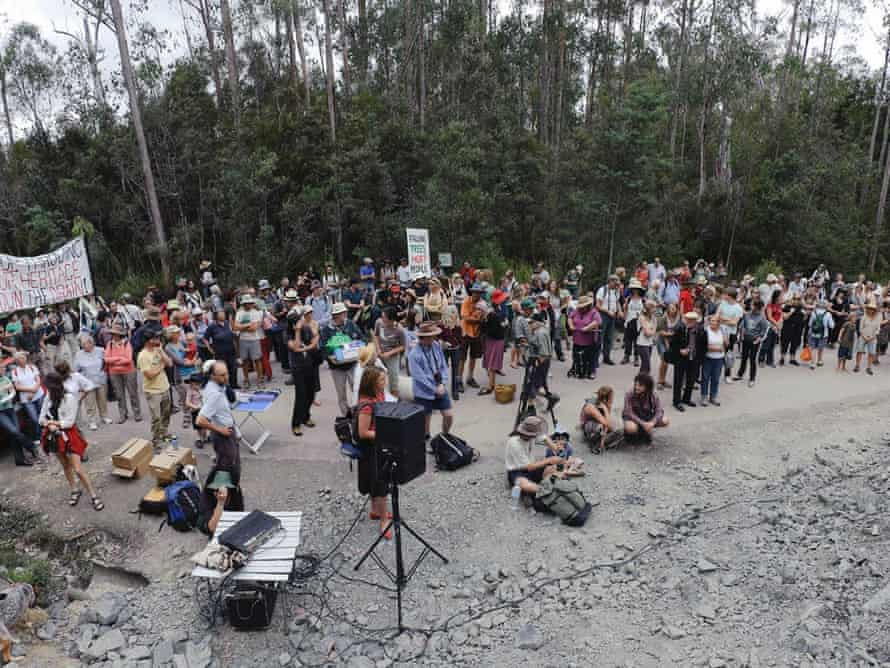 Protesters rally along a logging road in the Upper Florentine Valley.