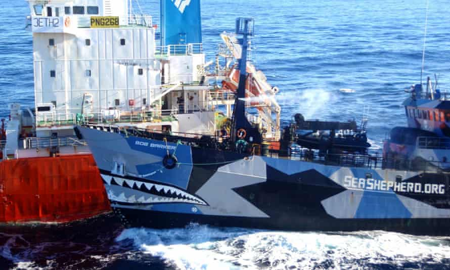 The Sea Shepherd ship colliding with a Japanese whaling fleet fuel tanker. Japanese whalers and militant conservationists clashed dangerously in icy waters off Antarctica.