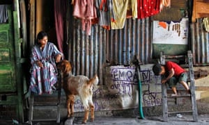 Woman, goat and son in slum