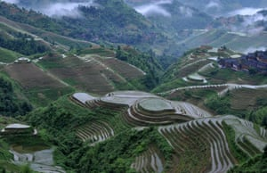 A birds-eye view of the terraced fields in Longsheng County of southwest China's Guangxi Zhuang Autonomous Region. The terraces have been cultivated for more than 650 years.