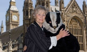 Virginia McKenna with a woman in badger costume opposing the government's badger cull plans, 5 June.