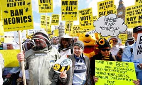 Campaigners urge UK government to ban the use of pesticides containing neonicotinoids, April 2013.