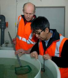 Rob King and So Kawaguchi check krill