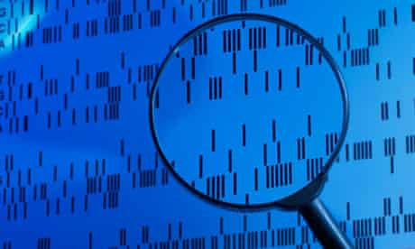 DNA sequence examined under a magnifying glass