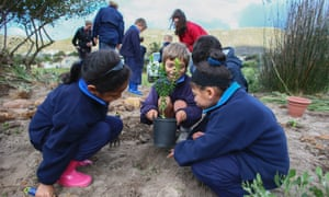 These children in Cape Town are honouring Nelson  Mandela on his birthday with a spot of planting in a public park. According to a statement made yesterday by his daughter Zindzi he is making a good recovery from the lung infection that has left him hospitalised since early June.