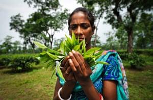 Indian Slavery: Kusma Takri, 27, child trafficker in Laluk