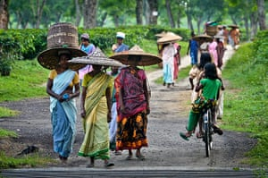 Indian slavery: tea pickers at an estate in Assam