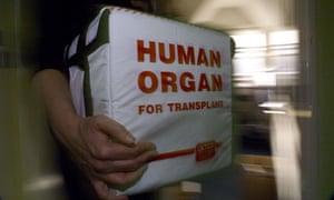 Box for human organ donation
