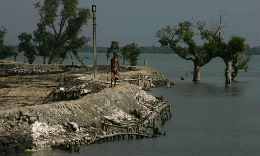 A villager walks on an embankment as trees are seen submerged in the Sundarban delta, India. Scientists have warned of alarming rise in temperatures in the Bay of Bengal due to climate change which could inundate coastal islands.