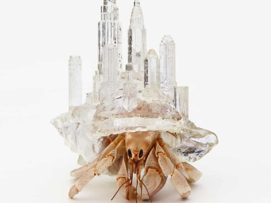 Crabitecture … Aki Inomata's shell based on the Manhattan skyline.