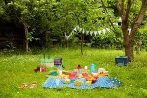 Park Picnic - picnic items on grass