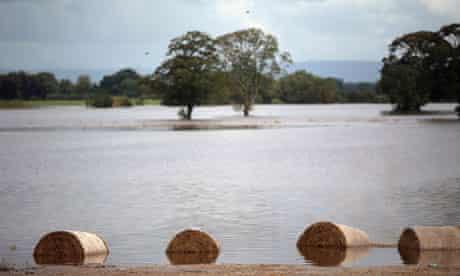 Flood on agricultural land