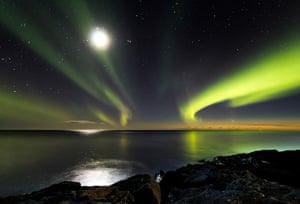 Astronomy shortlist: Comet Panstarrs
