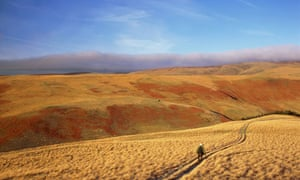 A lone hiker on path in the Cheviot Hills, Northumberland