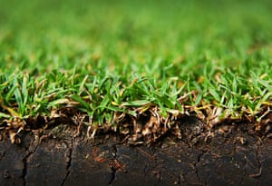 Close up Wimbledon: Grass on Centre Court