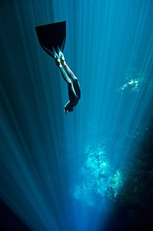 Free diving: Free diving cenote mexico