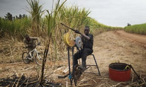A worker sharpens a blade in a sugarcane field near the Kruger National Park in Komatiepoort, South Africa.