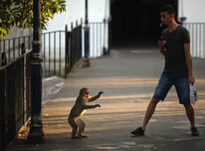 """A monkey faces a man at Landport Tunnel in downtown Gibraltar, south of Spain. Britain warned Spain it might take legal action to try to force Madrid to abandon tighter controls at the border with the contested British overseas territory of Gibraltar in what it called an """"unprecedented"""" step against a European ally. Photograph: Jon Nazca/Reuters"""