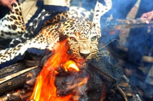 Week in wildlife: A leopard skin burns during an official burning in Mumbai