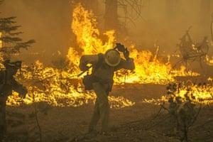wildfire: California Wildfires 2013 -Rim Fire_