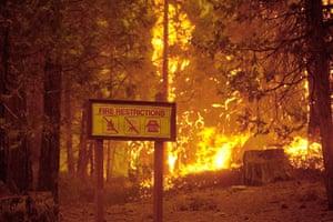 wildfire: California wild fire near Yosemite