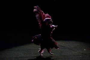 "Weekend in pictures: Panama City, Panama: A dog performs in ""The Incredible Dog Show"" during the"