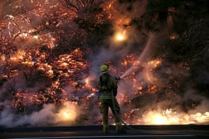 Weekend in pictures: California, USA: A firefighter douses the flames of the Rim Fire near Grove