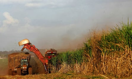 Biofuels made from sugar cane, Sao Paulo, Brazil